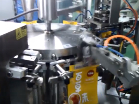 Rotary Nut Pouch Filling Machine With Horizontal Pouch Feeder